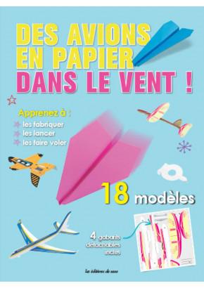 Des avions en papier dans le vent !